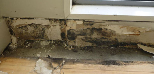 Leaky Home Rot In The Wall